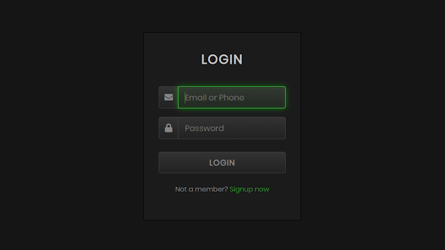 Animated Glowing Inputs Login Form in HTML and CSS